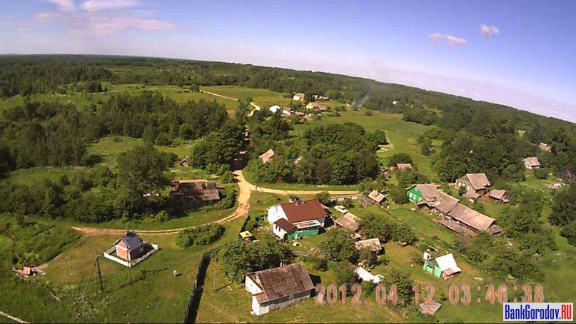 жуки поселок саратовской области фото и название отмечает, что данные