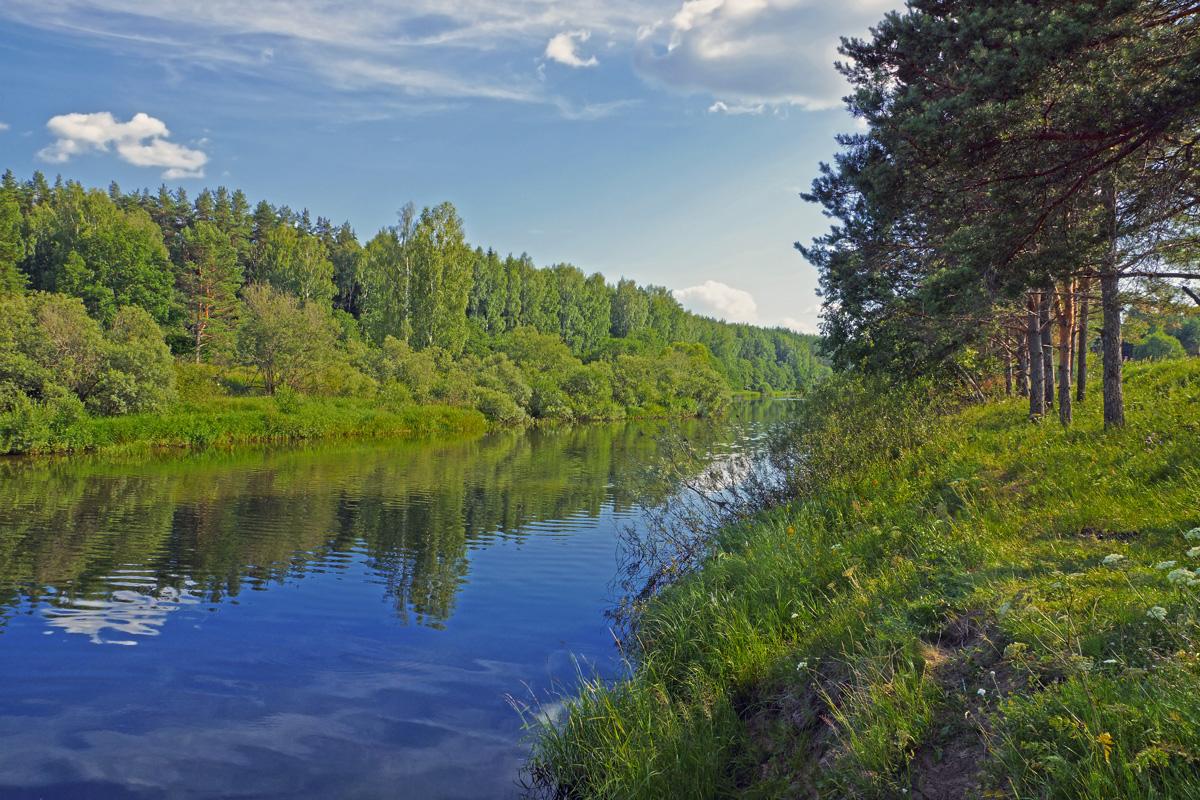 было реки тверской области фото книжного