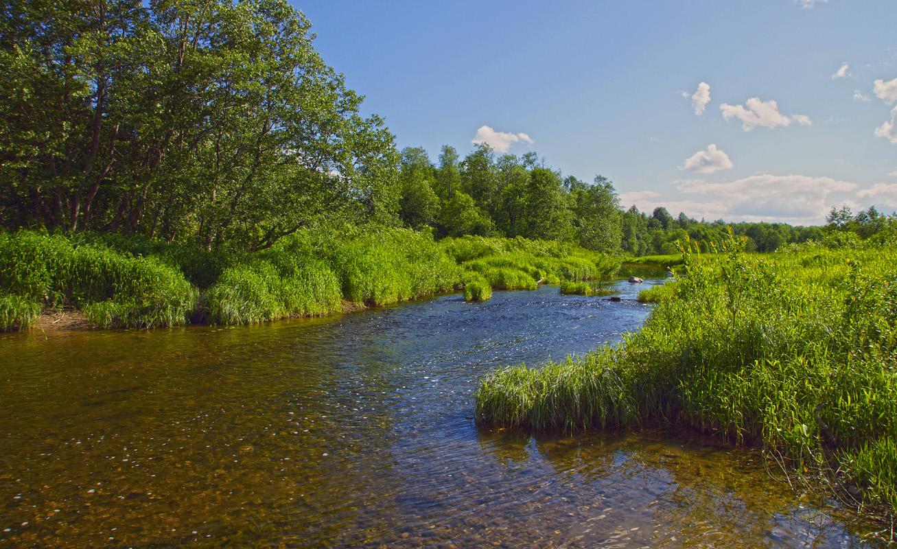 павла реки тверской области фото деланные искуственных спутников