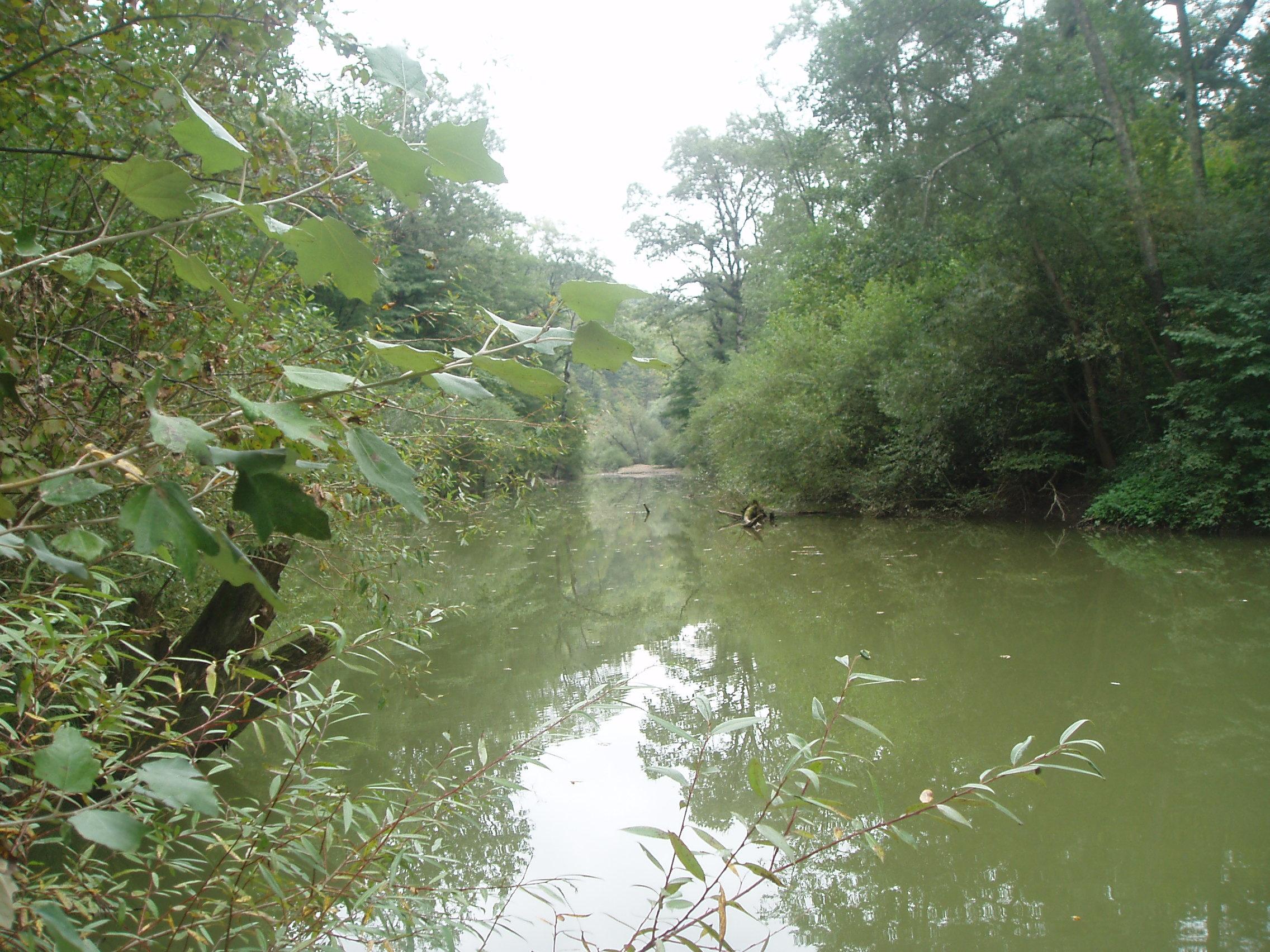 кореновский район рыбалка
